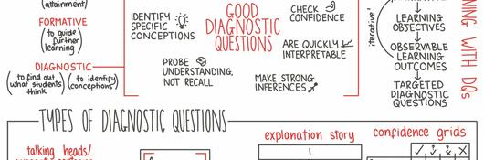 Info graphic of diagnostic questions